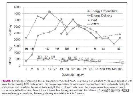 危重患者的个体化营养支持