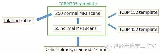 进化中的脑图谱--MNI template